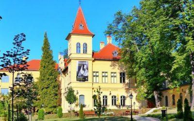 Nívódíjas a Vaszary Galéria